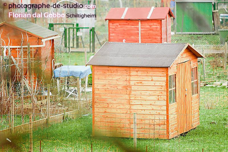 Andr e munchenbach cologiste ind pendante les jardins familiaux for Jardin familiaux